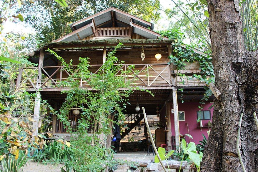 Jungle Huis Pai2