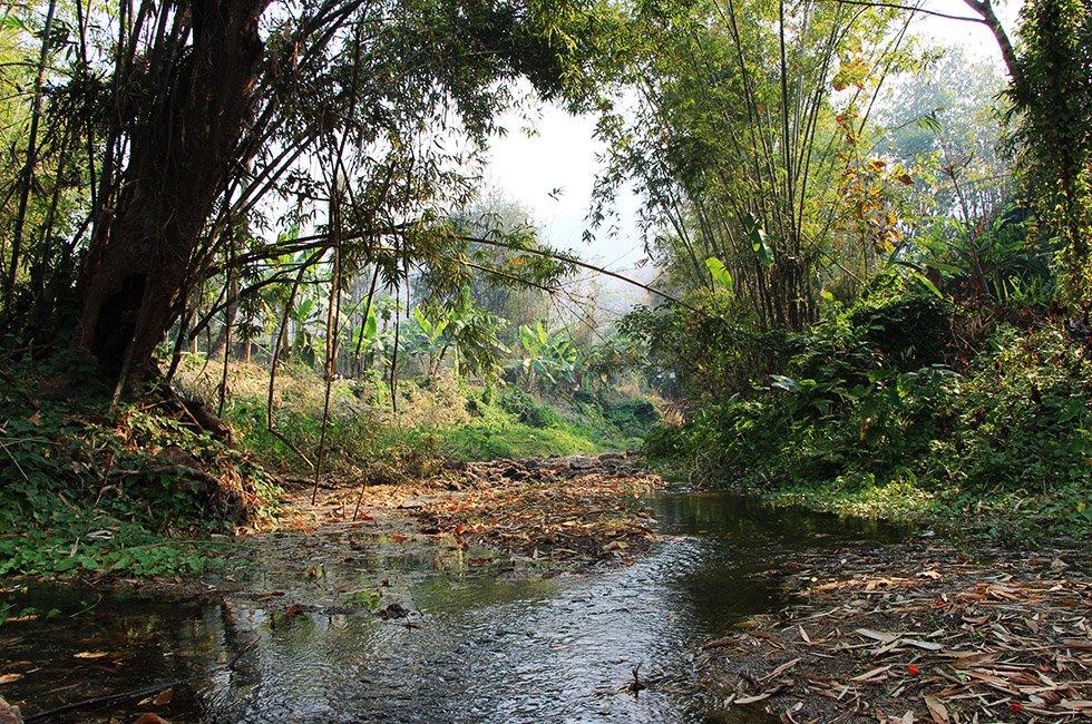 De bewuste rivier