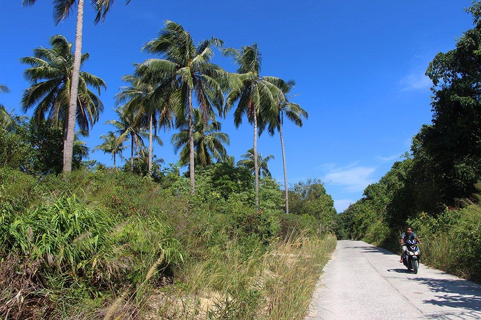 De wegen op Koh Phayam