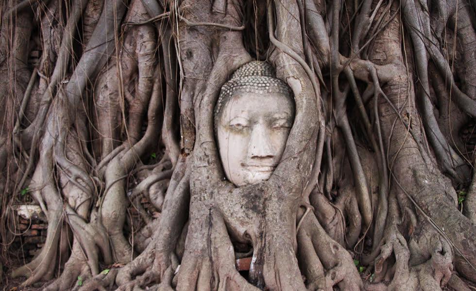 Wat Mahathat - Ayutthaya bezienswaardigheden