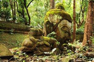 Groot Beeld Wat Umong