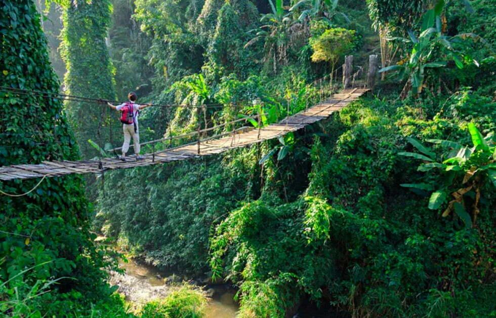 Een jungle tocht hoort thuis in je route door Thailand