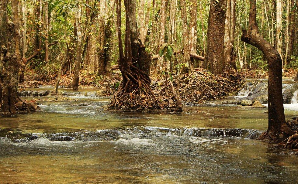 Emerald Pool Krabi ingang