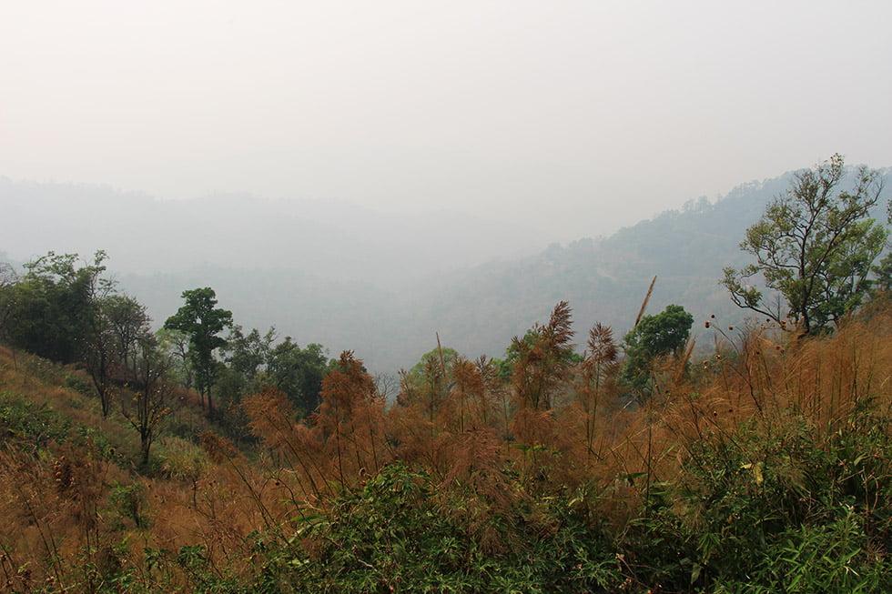 Smokey Season uitzicht