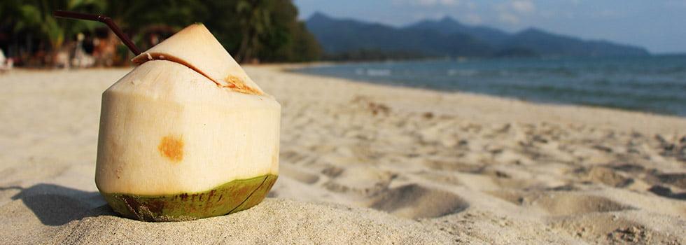 Kokosnoot drinken Thailand