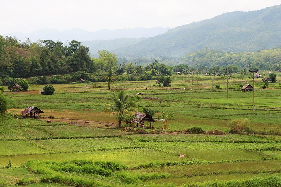 Mae Hong Son platteland