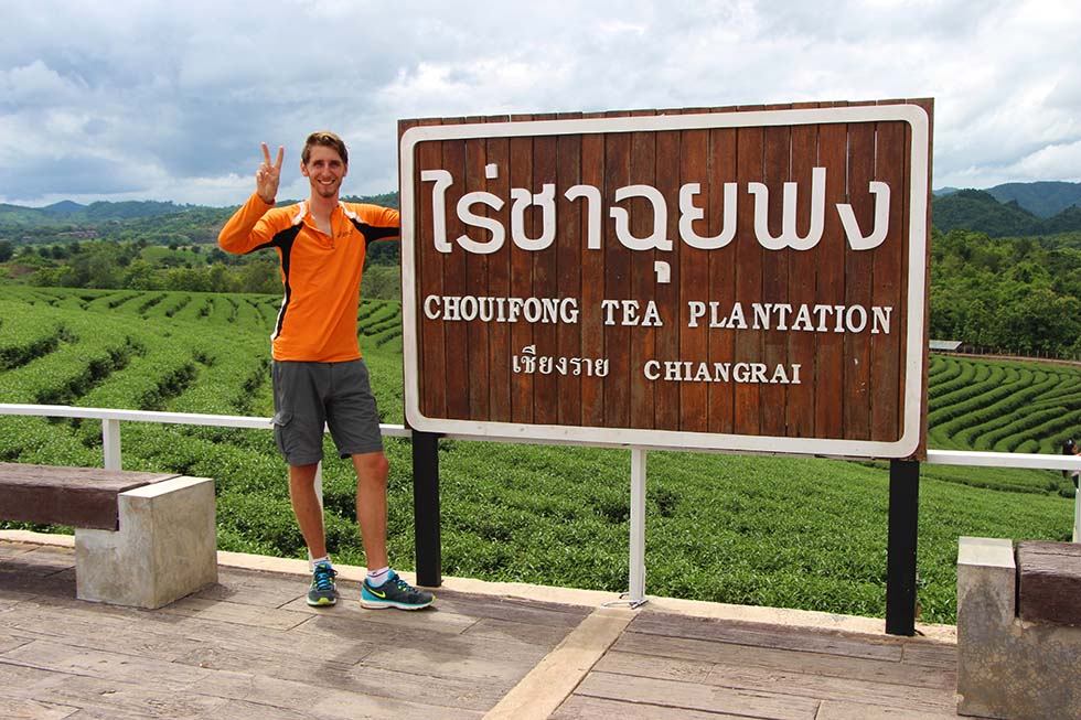 Theeplantage Chiang Rai Sander