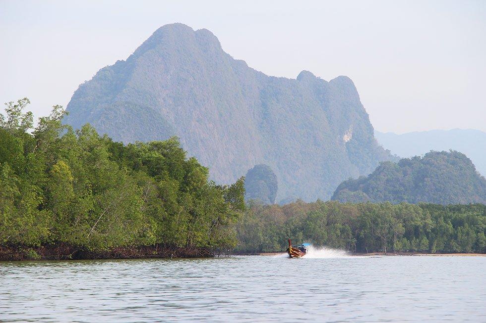 Longtailboot Mangrovebos Phang Nga