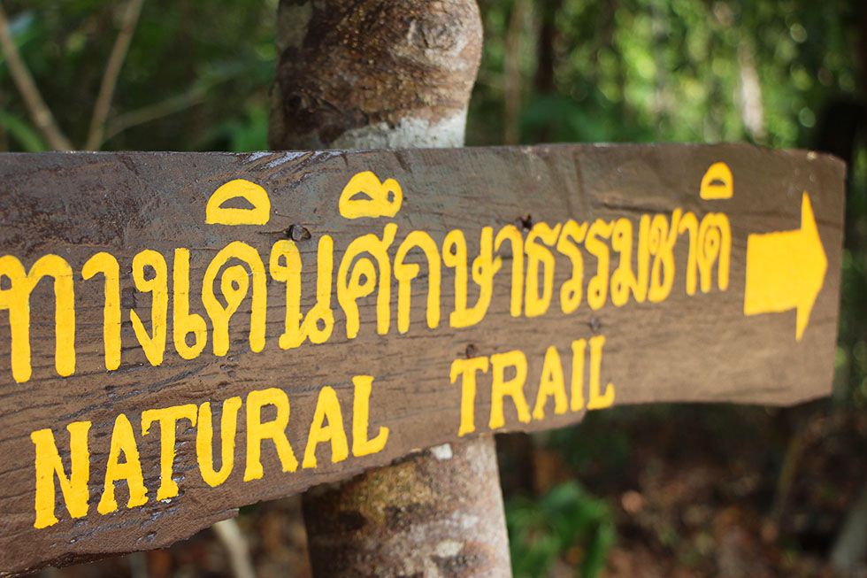 Natural Trial Koh Surin