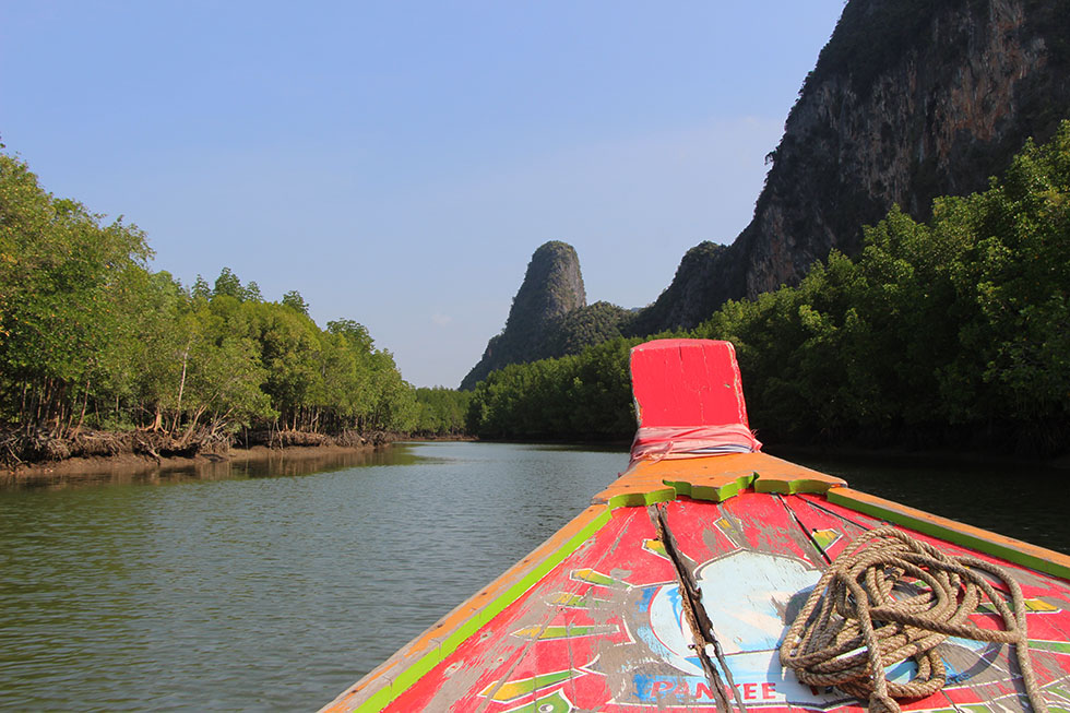 Phang Nga Bay Mangrove boot