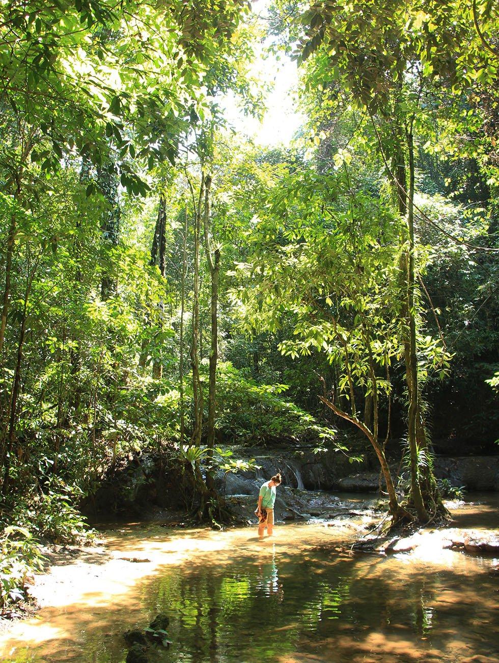 Sa Nang Manora Forest Park Phang Nga