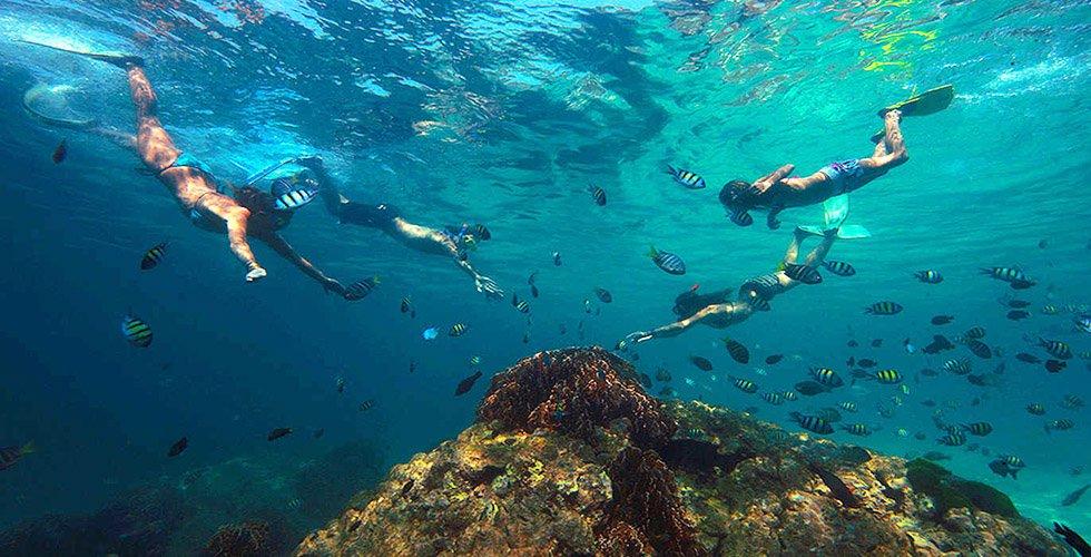 Snorkelen Thailand Koh Phi Phi