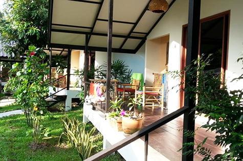 lucky-gecko-garden