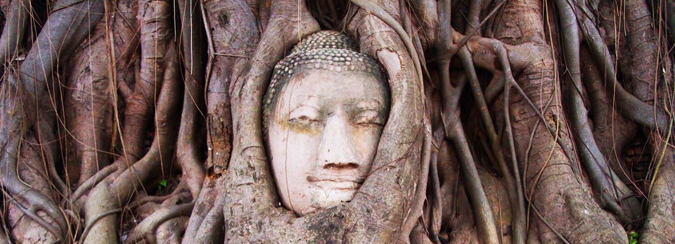 Het beroemdste Boeddhabeeld van Ayutthaya!