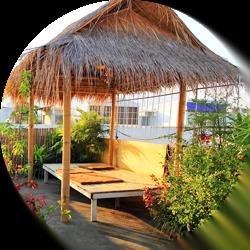 A Little Bird 2 Guesthouse in Chiang Mai