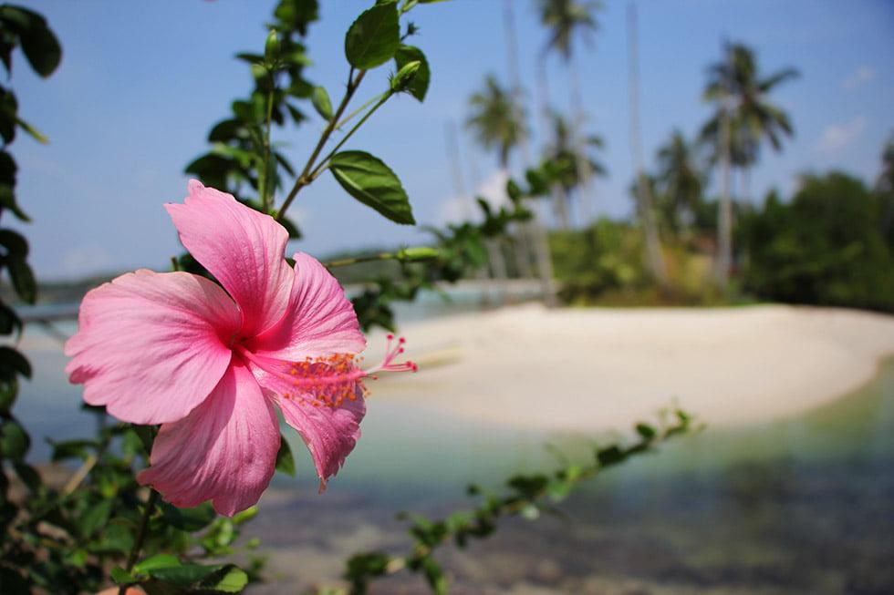 Siam Bay op Koh Kood