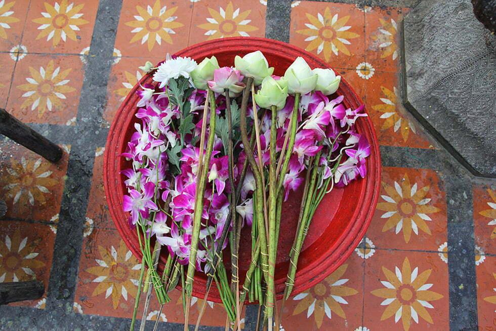 Geofferde lotusbloemen en orchideeën bij de Doi Suthep in Chiang Mai