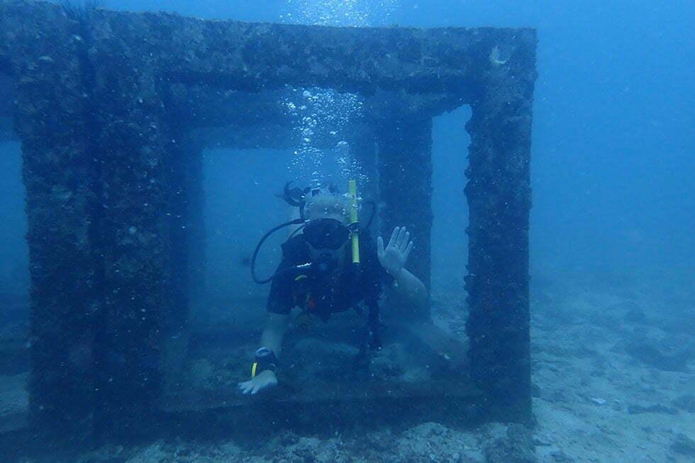 PADI Open Water Cursus