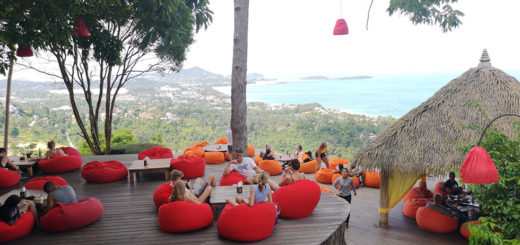 Lounge Jungle Club