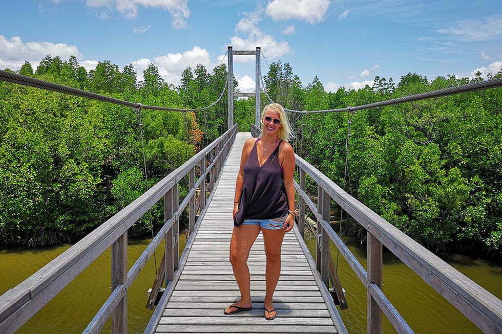 Mangrove bos van Mu Ko Chumphon National Park