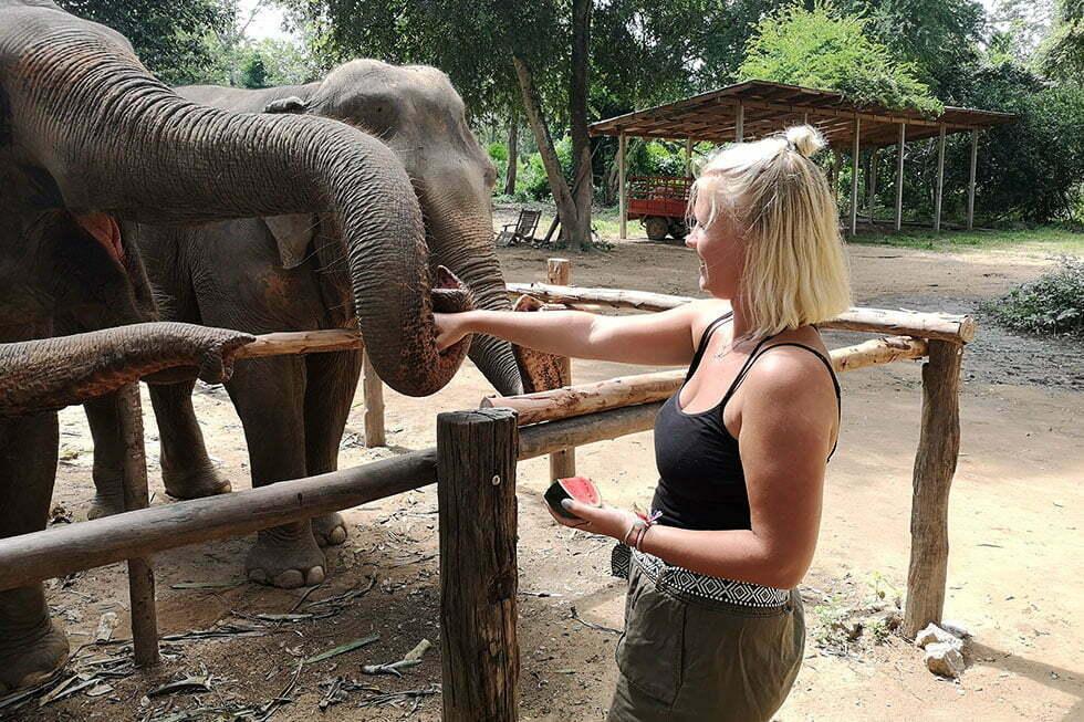 Elephant Haven in Kanchanburi