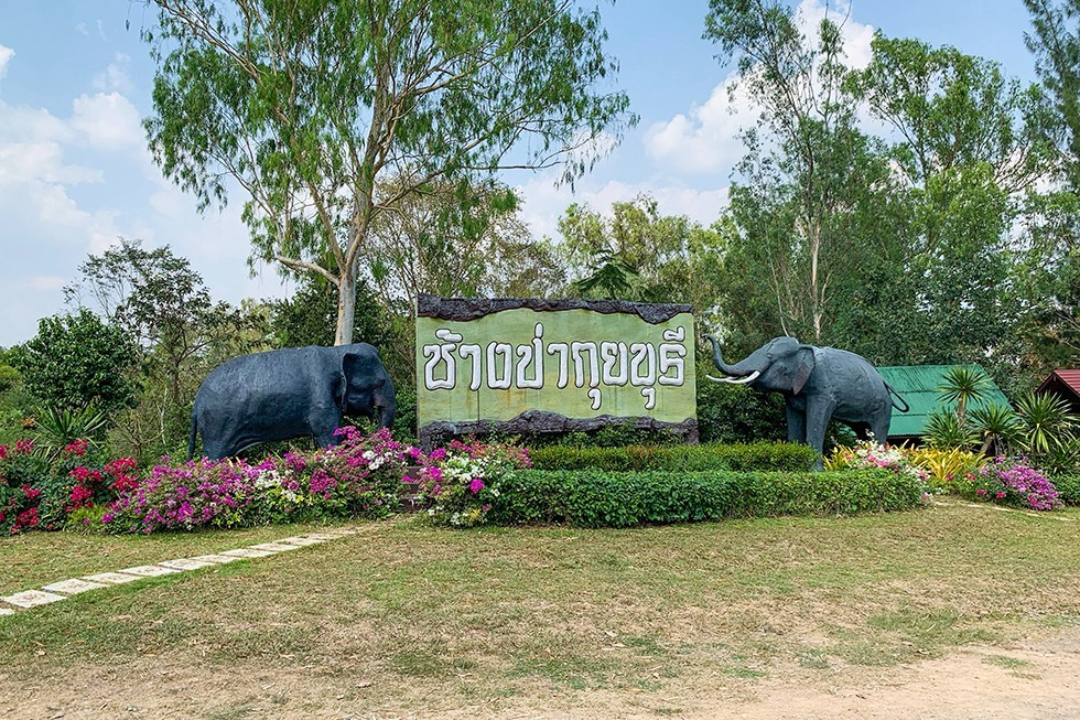 Kui Buri National Park - Olifant safari in Thailand