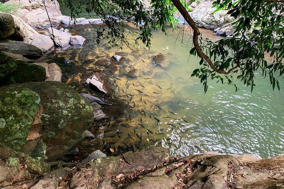 Pala-U Waterfall bij Hua Hin