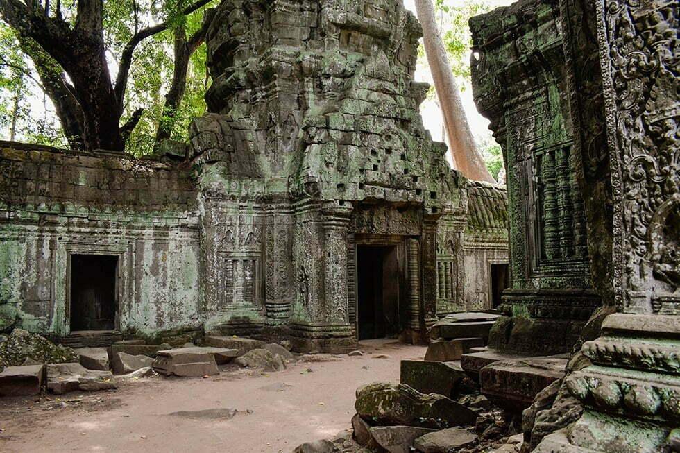 Ta Prohm bij Ankor Wat, Cambodja