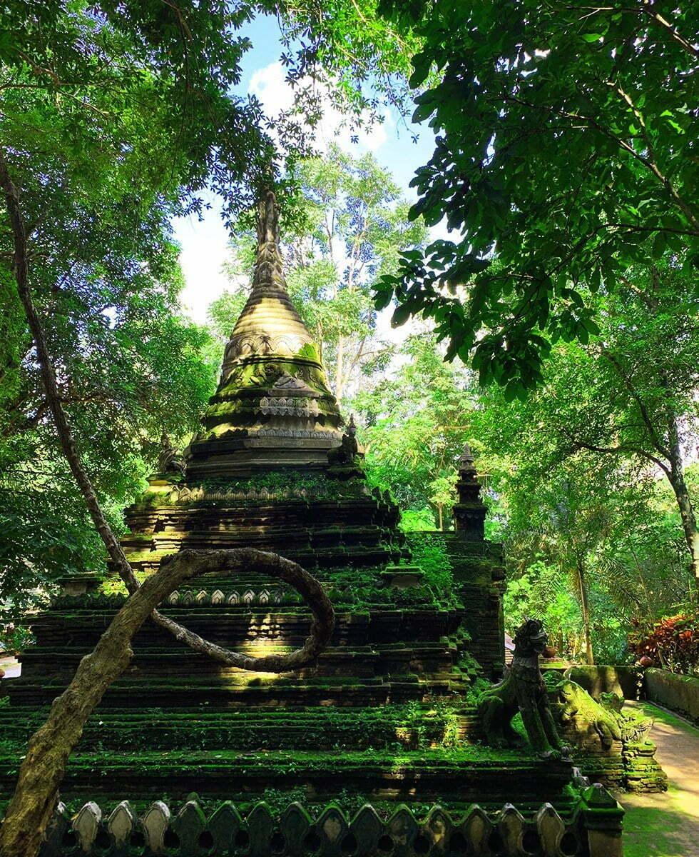 Wat Pha Lat Chiang Mai Pagode