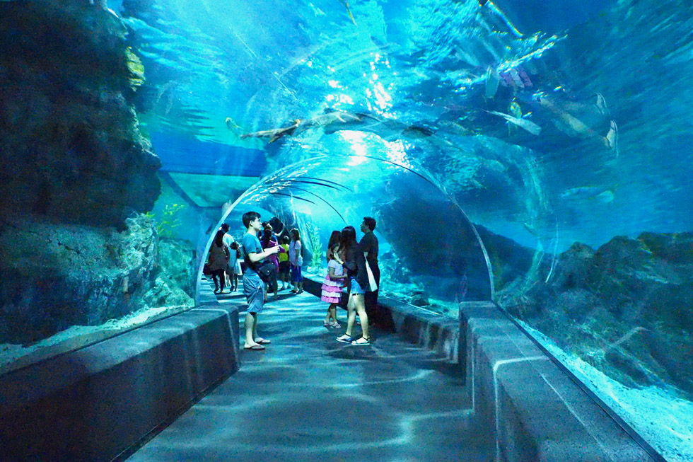 Bangkok Aquarium Winkelcentrum